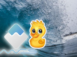 Waves-duck