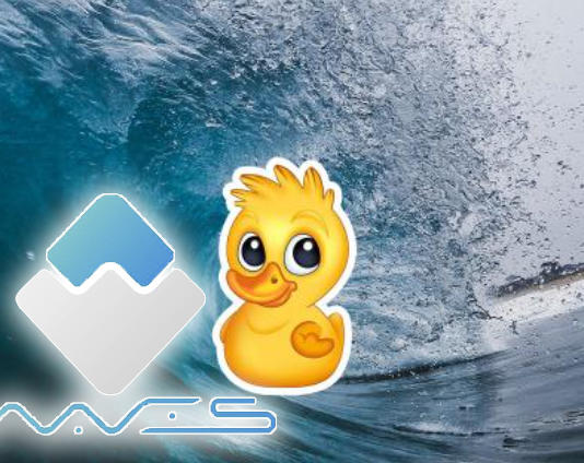 Waves-duck
