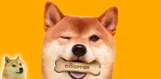 DOGE For Dogs
